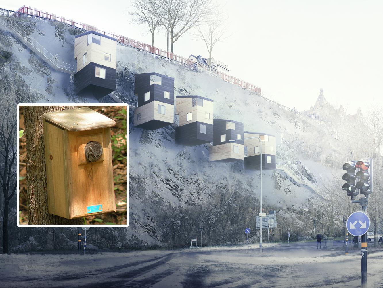 Viviendas inspiradas en casas de madera para p jaros - Reformas de viviendas en madrid ...